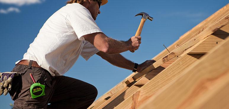 Tømrer levicon